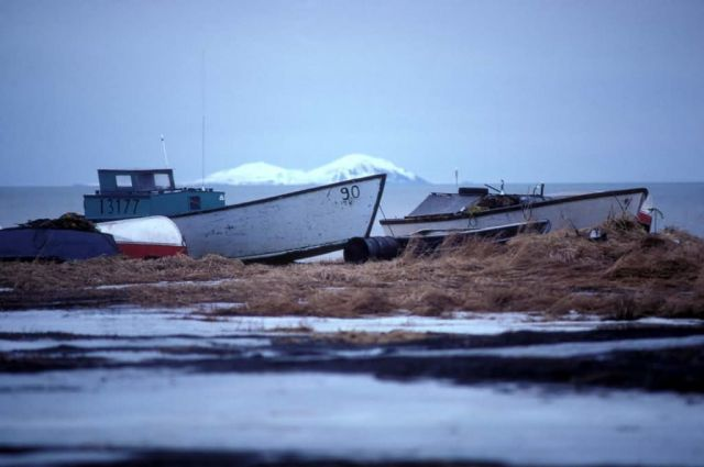 Fishing Boats on Shore Picture