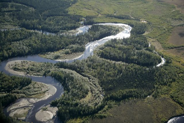 Kanuti River oxbows Picture