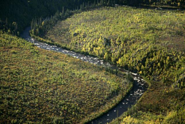 Kanuti River boulder garden Picture
