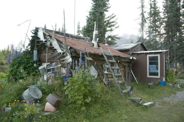 Reakoff cabin Wiseman, On the Koyukuk river, middle fork Picture