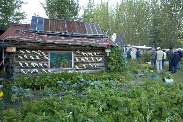 Reakoff cabin, Wiseman, Alaska Picture