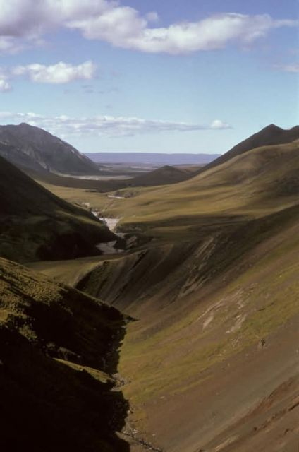 Arctic Refuge Valley in Summer Picture
