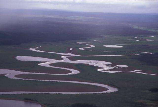 Innoko Refuge Meandering River Picture