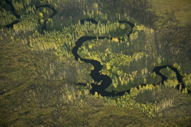 Kanuti NWR riverscape Picture