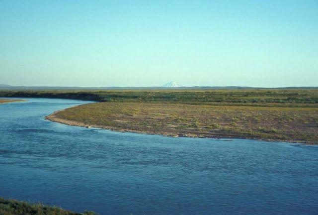 King Salmon River Landscape Picture