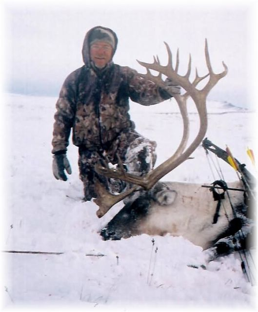Caribou With A Bow Picture