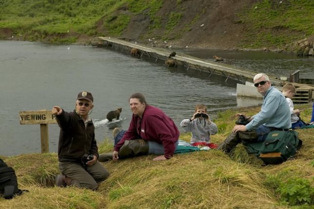 People Observing Bears at Frazer Fish Pass Picture