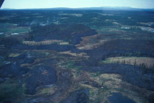 Wildfire on Upper Innoko River Picture