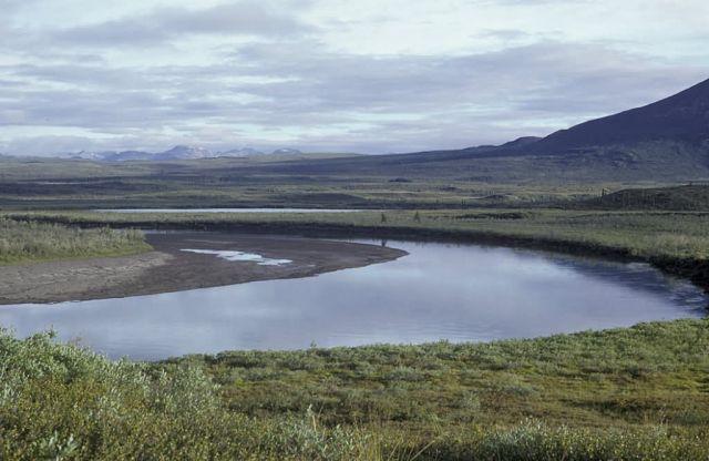 Sheenjek River in Summer Picture
