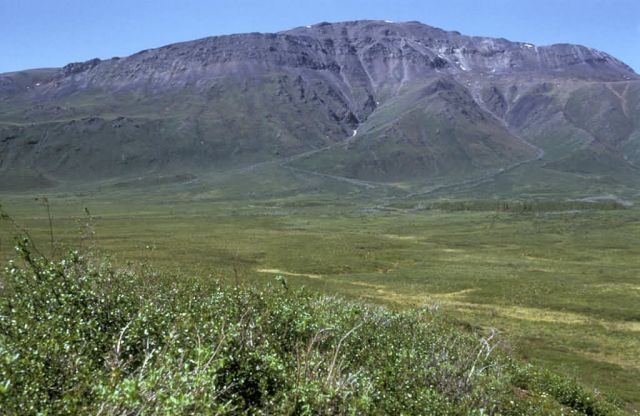 Sheenjek River Valley Near Table Mountain Picture
