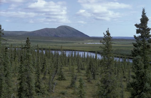 Sheenjek River Picture