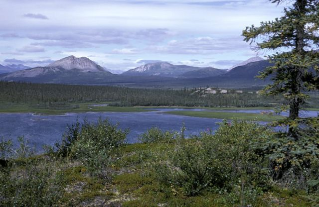 Lake Near Lower Sheenjek River Valley Picture