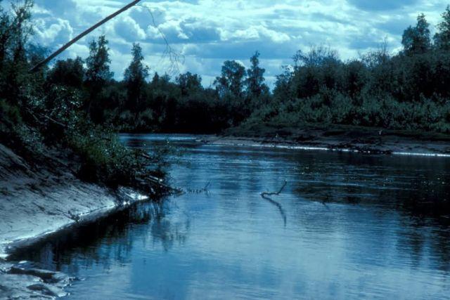 Kanuti Refuge River Picture