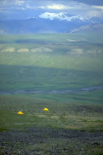 Camping on the Arctic Refuge Coastal Plain Picture
