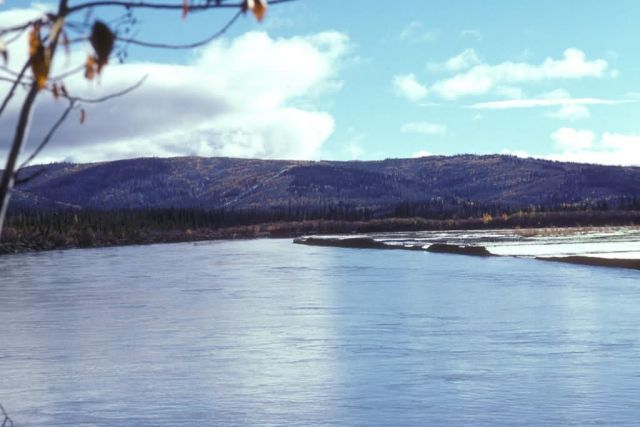 Tanana River Picture