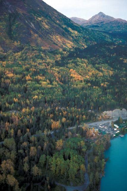 Kenai Lake Fall Colors Picture