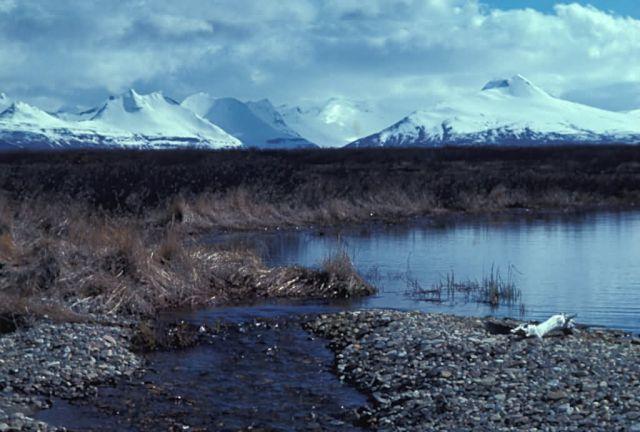 Becharof Lake Landscape Picture