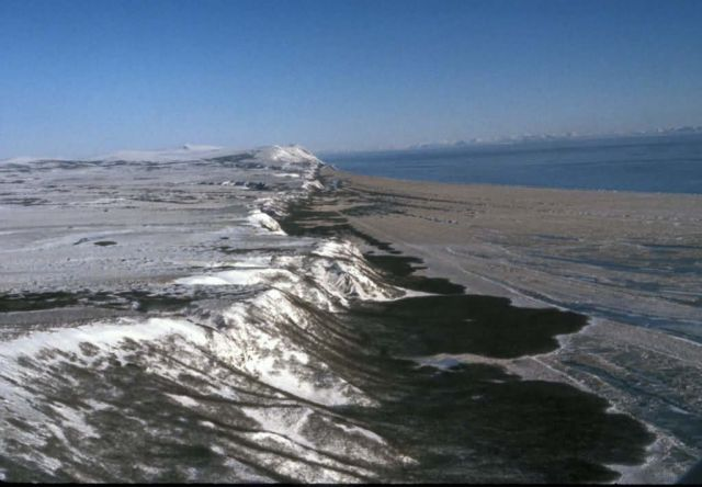 Hagemeister Island, SW side during 1986 reindeer survey Picture