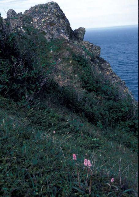 Besboro Island terrain , Noton sound Picture
