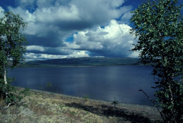Sithylemenkat Lake Near Bettles Picture