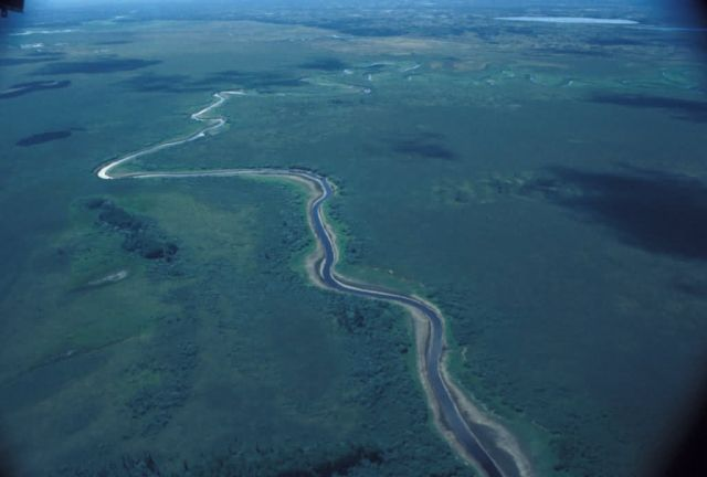 Innoko Refuge Meandering River Picture