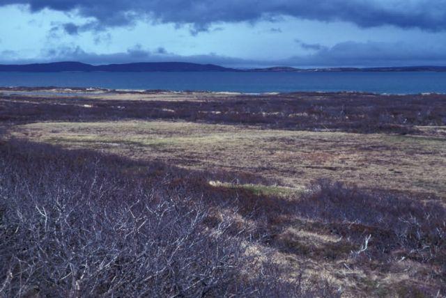 Lake Becharof Landscape Picture