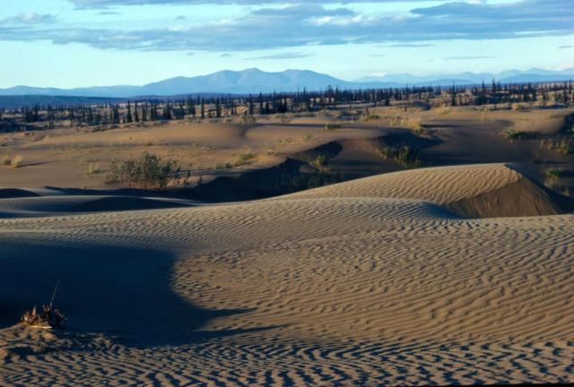 Nogahabara Sand Dunes Picture