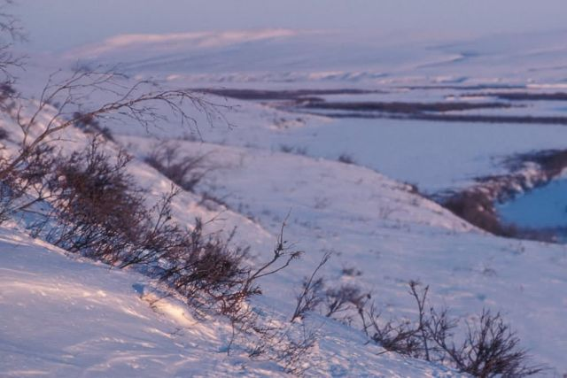 Noatak River Winter Scene Picture
