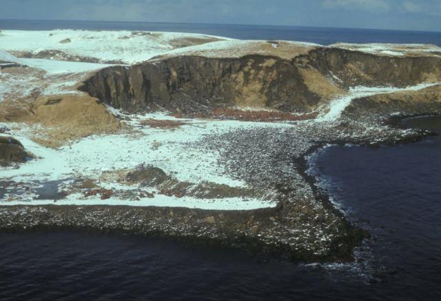 Amchitka Island, Kirilof Point Picture