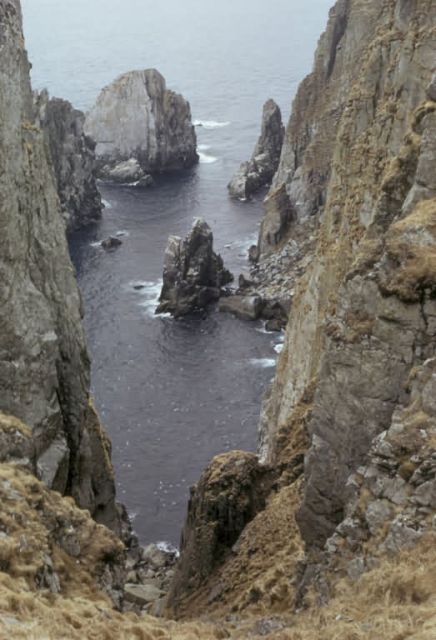 Semidi Islands, Chowiet Is., Alaska Peninsula Unit, Alaska Maritime National Wildlife Refuge Picture