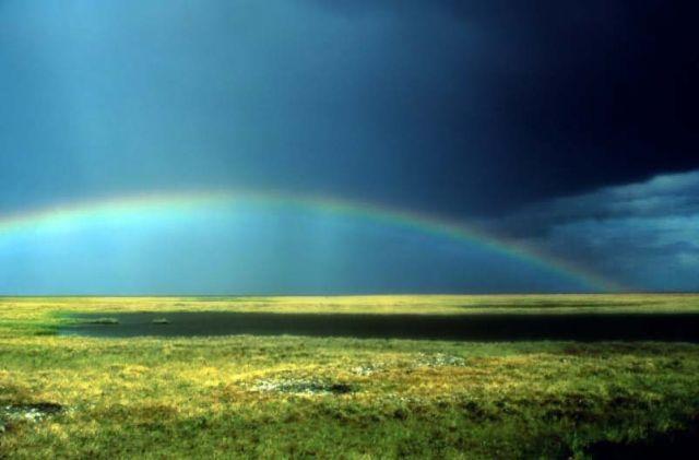 Rainbow Over Arctic Refuge Coastal Plain Picture