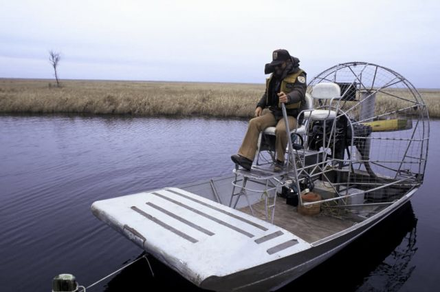 FWS Employee Navigates Airboat Picture
