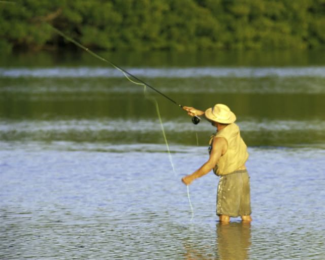 Fly Fishing at Ding Darling NWR Picture