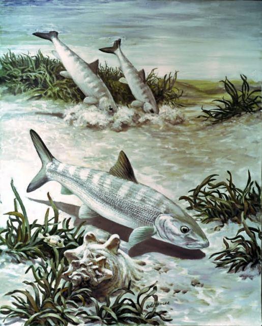 Bonefish Picture