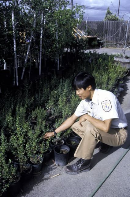 FWS Employee with Native Plants Picture