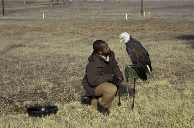 FWS Employee with Bald Eagle Picture