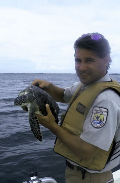 FWS Employee with Green Sea Turtle Picture