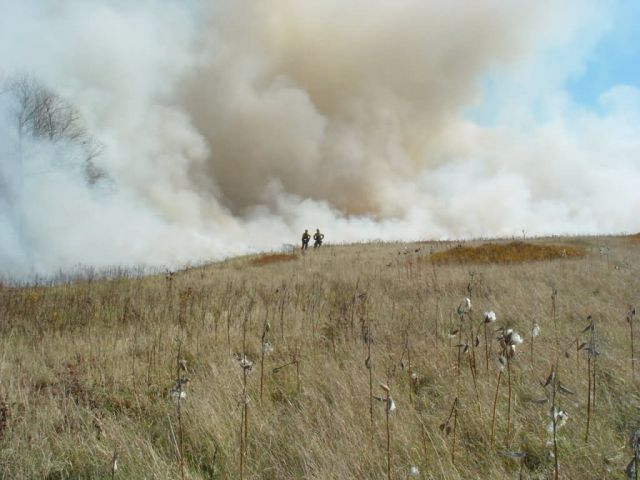 Prescribed burn at Canaan Valley National Wildlife Refuge Picture
