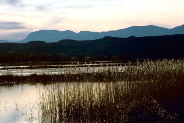 Sunset at Bosque del Apache Picture
