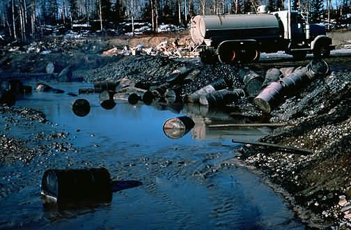 Pollution at Kenai Moose Range Picture