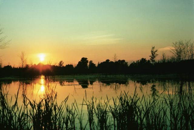 WO1866 Sunset at Iroquois NWR Picture