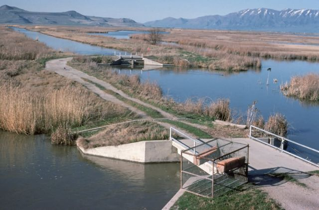 WO1267 Water Control Structure, Bear River NWR Picture