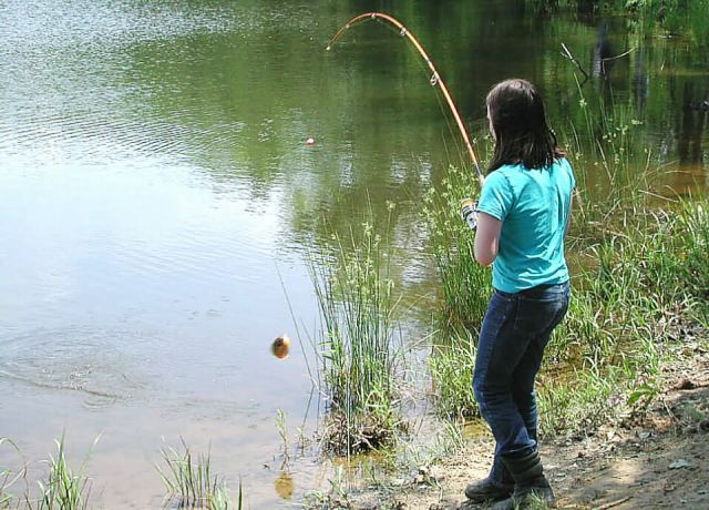 Young girl catching bluegill at Occoquan Bay NWR Picture