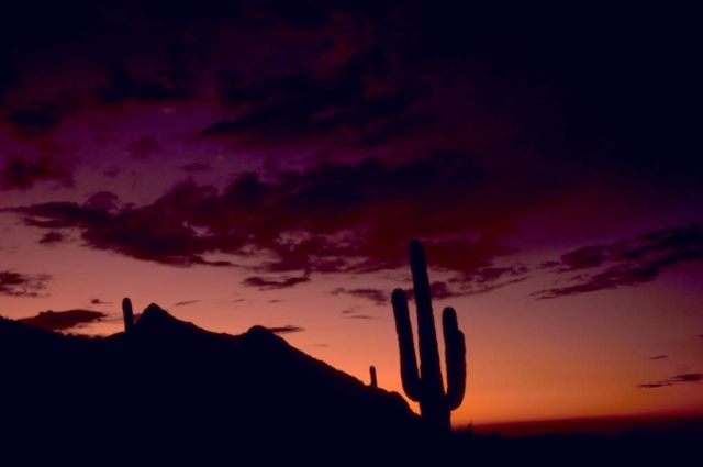 Sunset in Sabino Canyon Picture