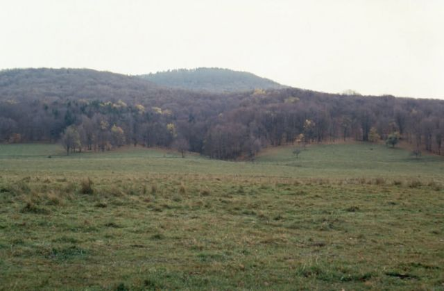 WO8729 Canaan Valley Picture