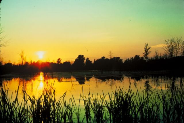 Sunset at Iriquois National Wildlife Refuge Picture