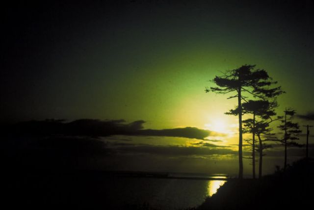 Sunset at Dungeness National Wildlife Refuge Picture