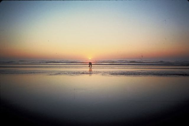 Sunset on Beach Picture