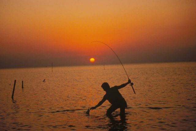 Sunset Fishing Picture