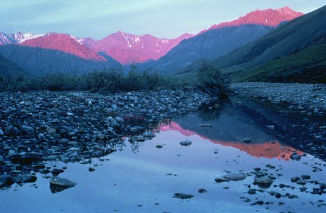 WO5170 Kongakut Valley, Alaska Picture